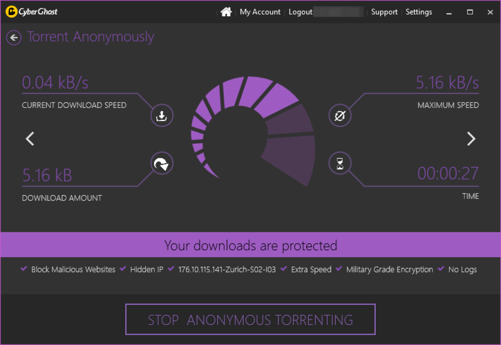 cyber ghost torrent protection